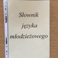 """""""Słownik języka młodzieżowego"""""""